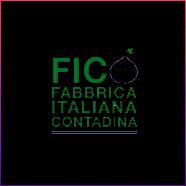 Client_Fico black